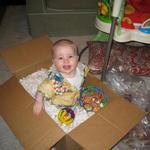 ollie_in_a_box