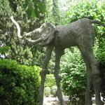 dali_garden