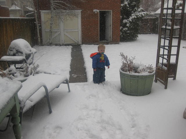 paci_in_the_snow