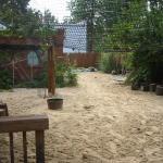 18_pearl_st_backyard.jpg