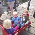 wagon_fun