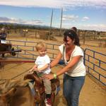 kt_ollie_horse