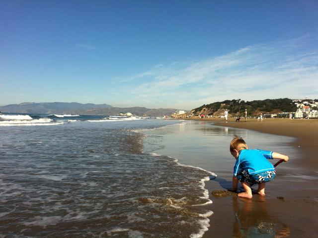 ollie_ocean_beach