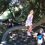 alena_silas_ollie_tree2