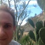 psp_cactus